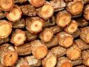лечение деревянными плашками