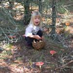 как ребенку не заблудиться в лесу