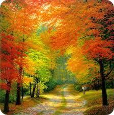 Осенняя апатия