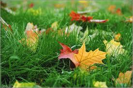 Осень. Народные приметы