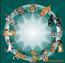 астрология стресса