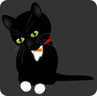 Поиграйте с Котей!
