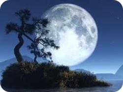 Лунная диета на ноябрь и декабрь 2012 года