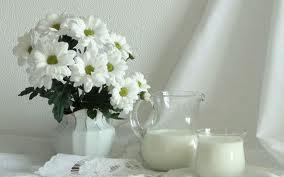 Домашнее лечение молочными и кисломолочными продуктами