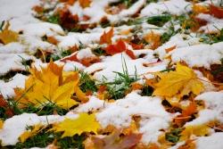 Денежный календарь на ноябрь 2013
