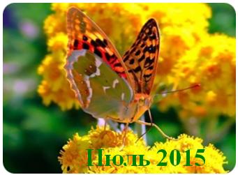 Денежный календарь на июль 2015