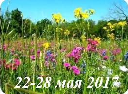 Гороскоп на неделю 22-28 мая