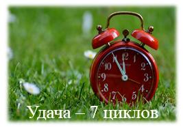 Удача - 7 циклов