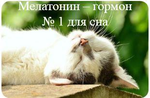 Мелатонин - гормон № 1 для сна
