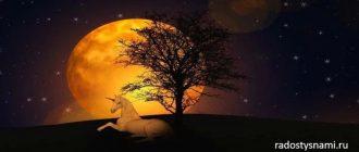 Лунный календарь на неделю 17-23 февраля 2020