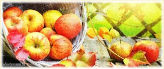 Рецепты здоровья для осени